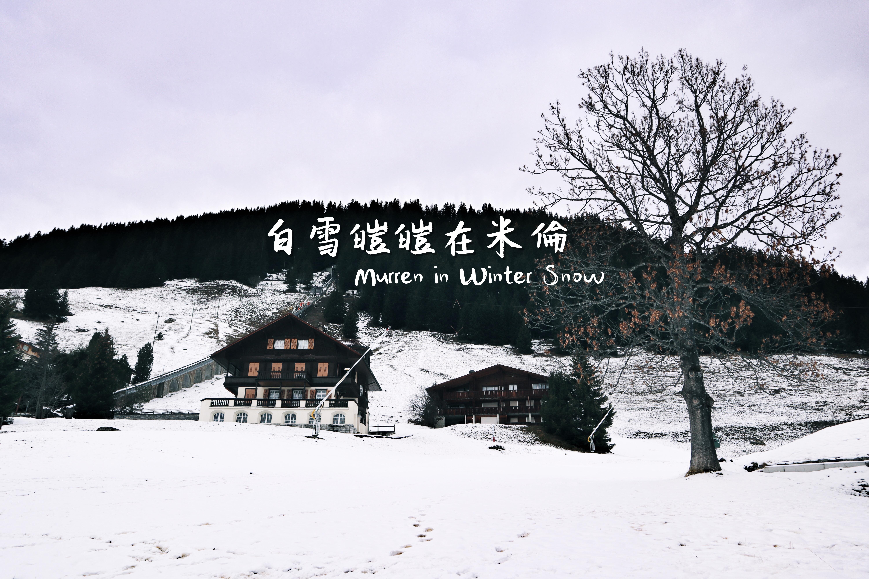 【初冬遊瑞捷】冰雪覆蓋格林德瓦 Grindelwald in Snow